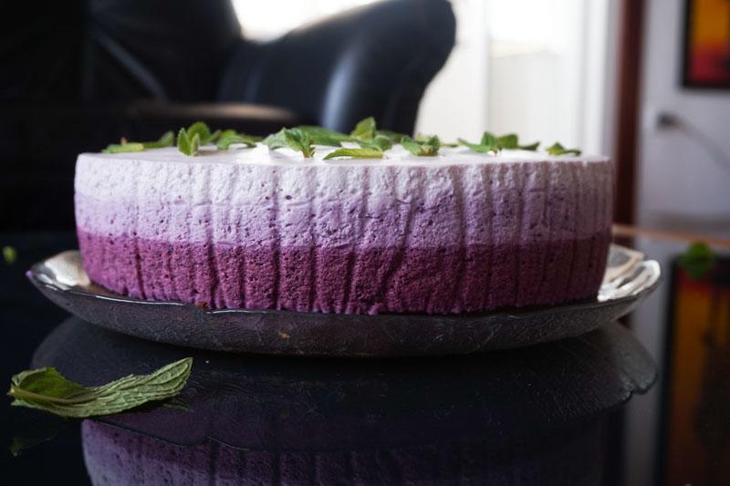 torta borovnica-01233