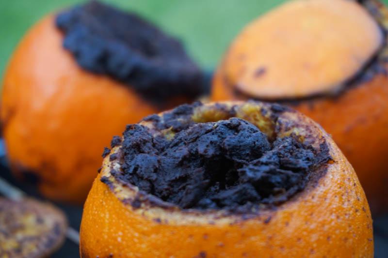 zar pomaranca-5