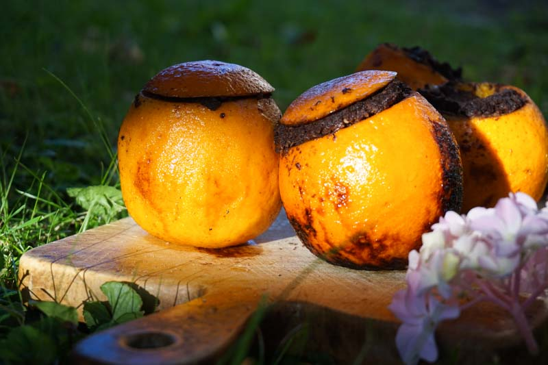 zar pomaranca